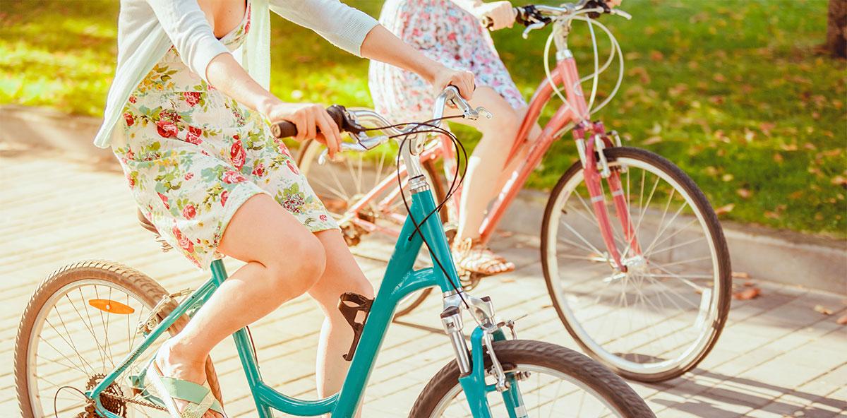 anima bike noleggio